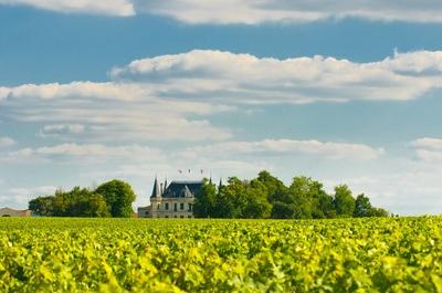 Bordeaux Wein aus Saint Emilion günstiger beim Weinversand Vinatis online kaufen.